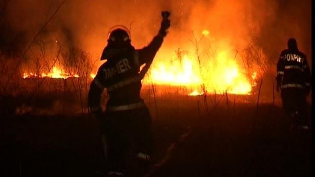 Incendiul din Mălâncrav a fost localizat, 6 hectare de pădure au fost distruse