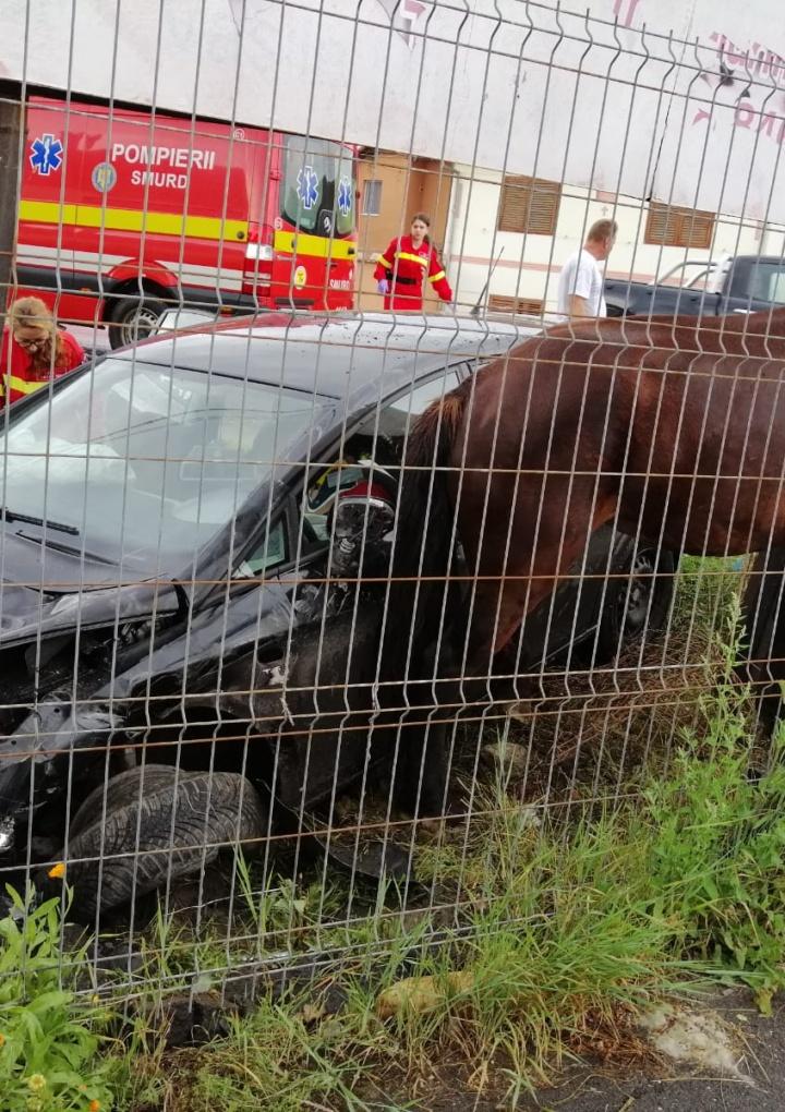 Un autoturism a derapat și a lovit un cal